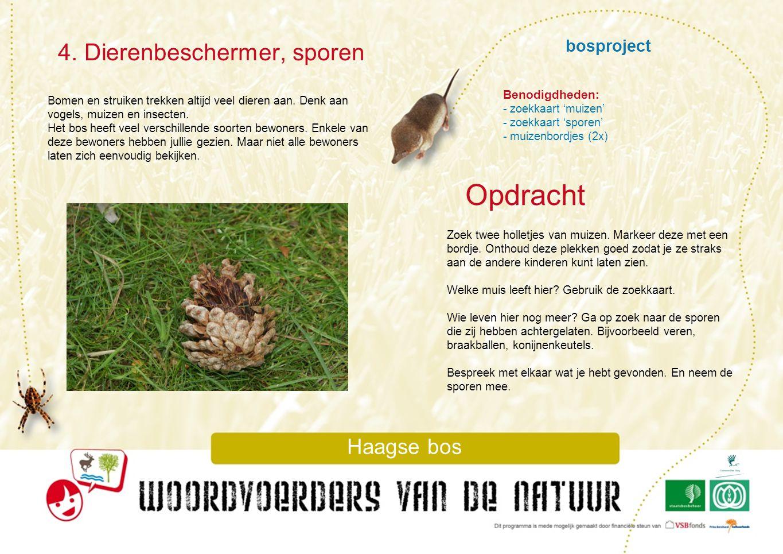 Opdracht 4. Dierenbeschermer, sporen bosproject Haagse bos