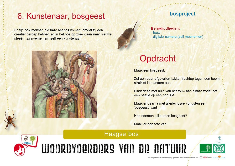Opdracht 6. Kunstenaar, bosgeest bosproject Haagse bos Benodigdheden:
