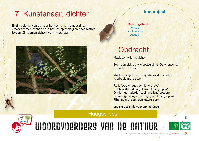7. Kunstenaar, dichter Opdracht bosproject Haagse bos Benodigdheden: