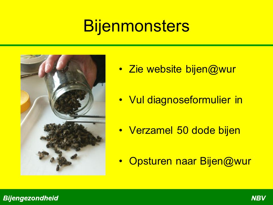 Bijenmonsters Zie website bijen@wur Vul diagnoseformulier in