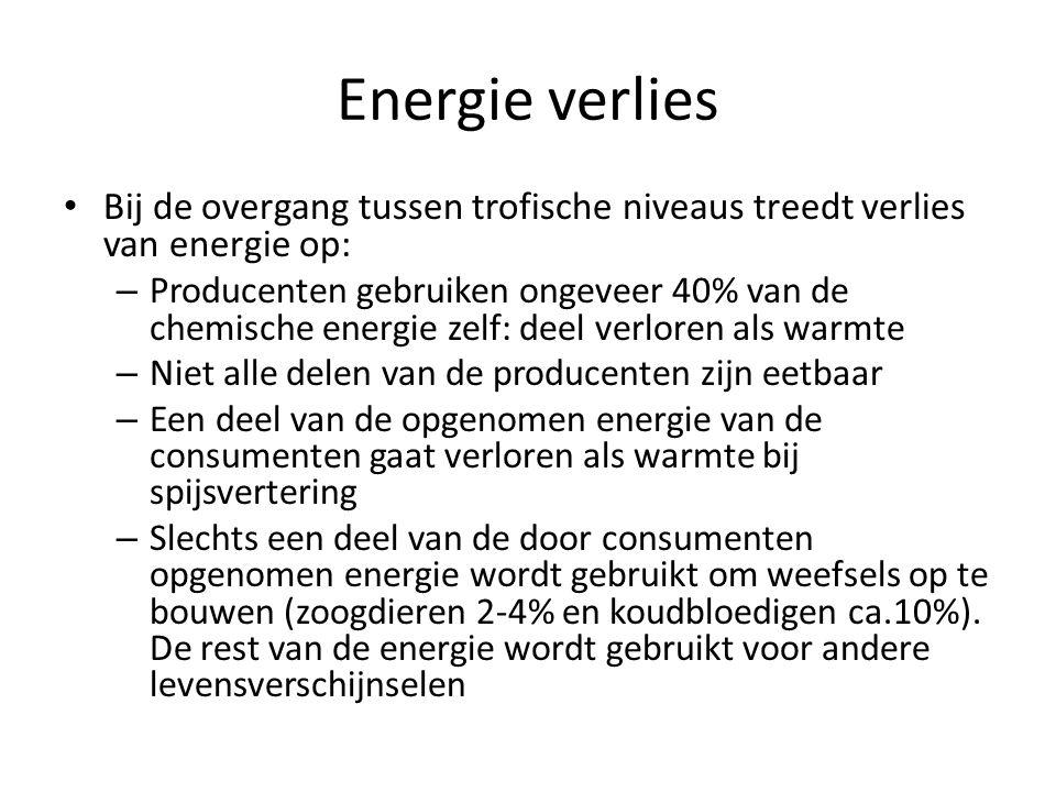 Energie verlies Bij de overgang tussen trofische niveaus treedt verlies van energie op: