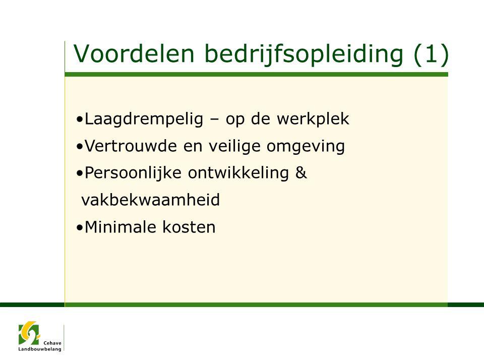 Voordelen bedrijfsopleiding (1)