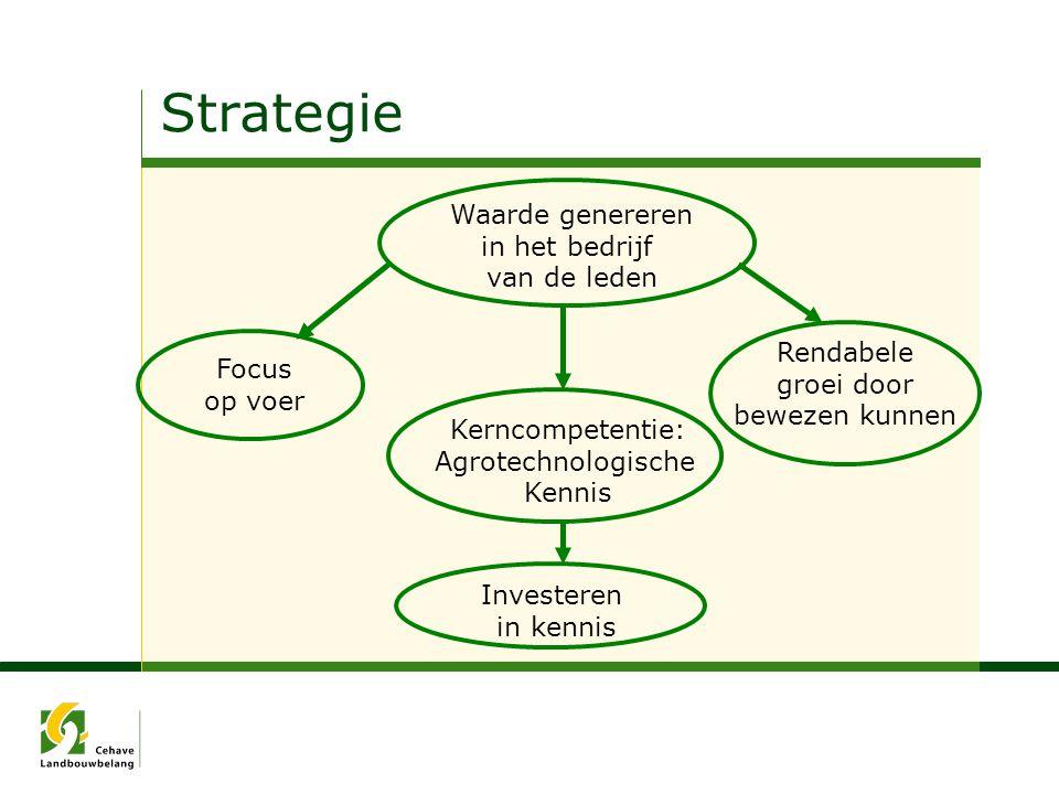 Strategie Waarde genereren in het bedrijf van de leden Rendabele
