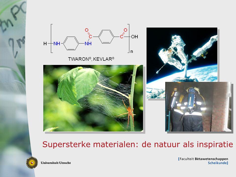 Supersterke materialen: de natuur als inspiratie