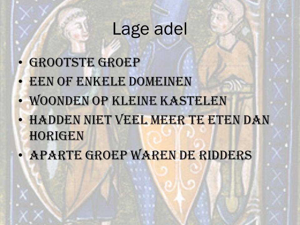 Lage adel Grootste groep Een of enkele domeinen