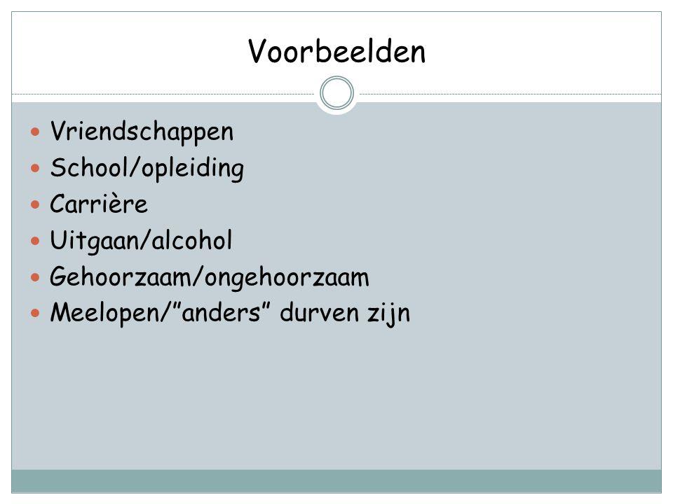 Voorbeelden Vriendschappen School/opleiding Carrière Uitgaan/alcohol