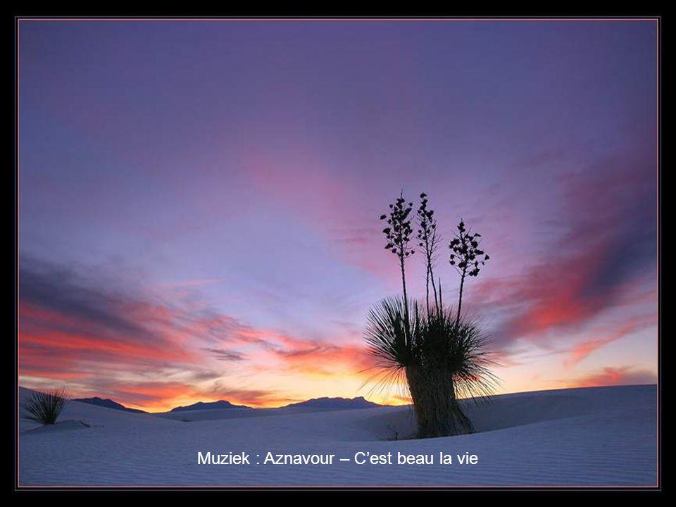 Muziek : Aznavour – C'est beau la vie