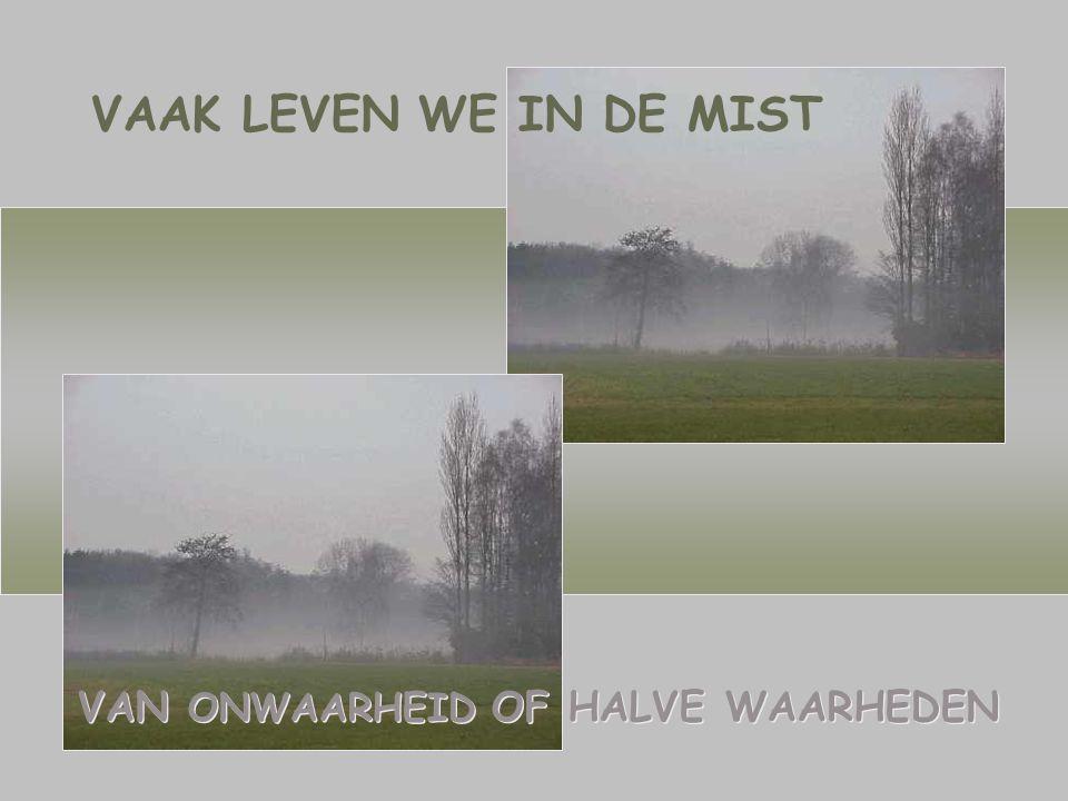 VAN ONWAARHEID OF HALVE WAARHEDEN