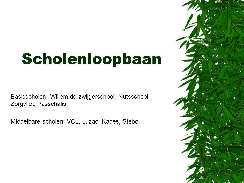 Scholenloopbaan Basisscholen: Willem de zwijgerschool, Nutsschool Zorgvliet, Passchalis.