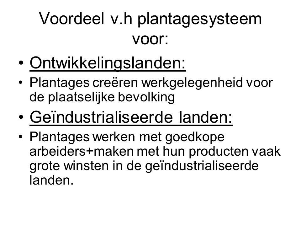 Voordeel v.h plantagesysteem voor: