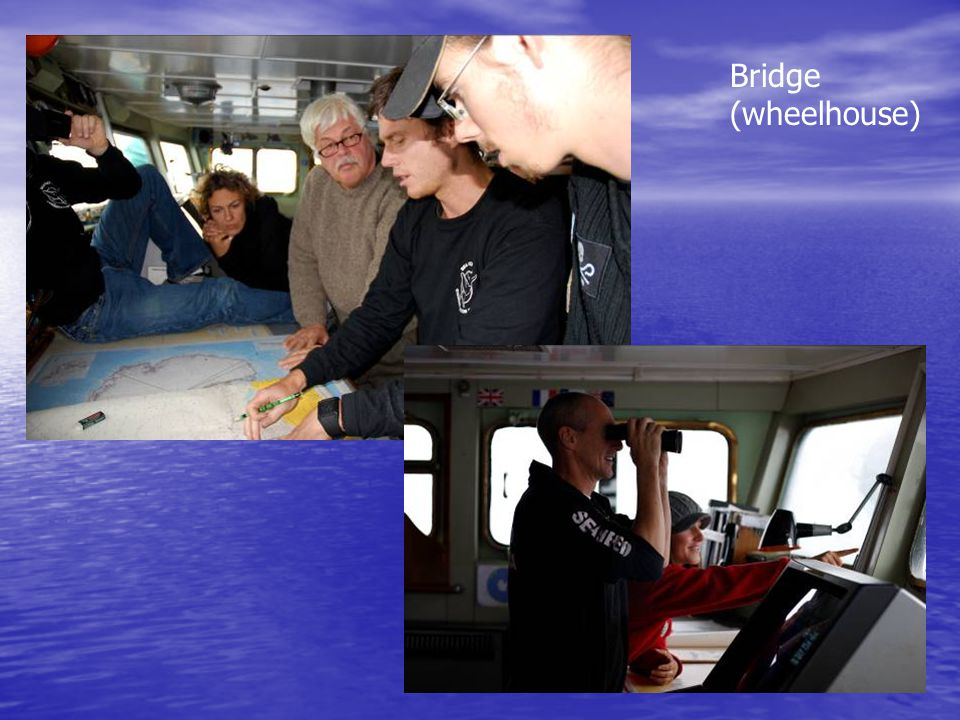 Bridge (wheelhouse)