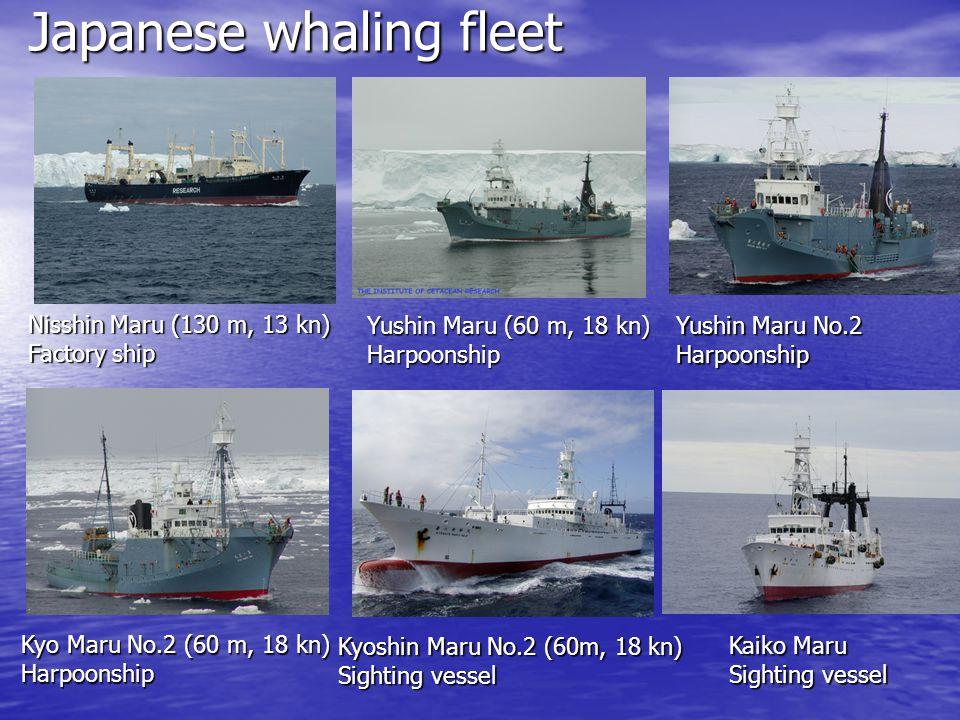 Japanese whaling fleet