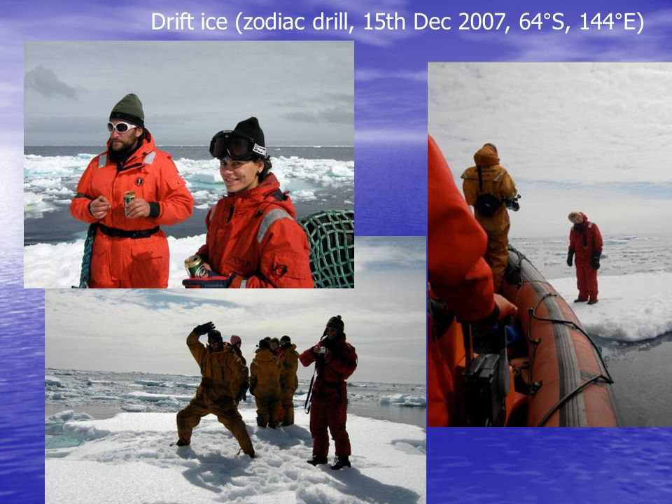 Drift ice (zodiac drill, 15th Dec 2007, 64°S, 144°E)