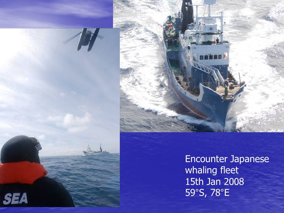 Encounter Japanese whaling fleet 15th Jan 2008 59°S, 78°E