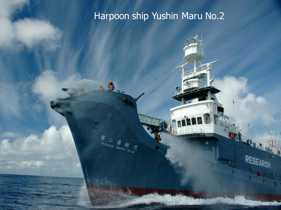 Harpoon ship Yushin Maru No.2