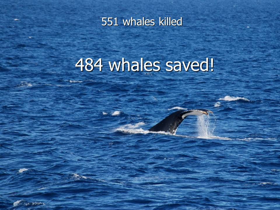 551 whales killed 484 whales saved!