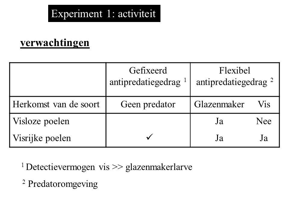 Experiment 1: activiteit