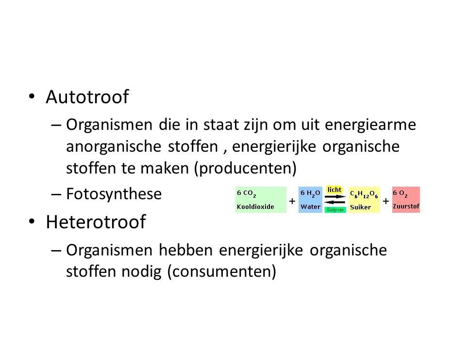 Autotroof Heterotroof