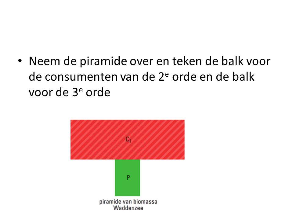 Neem de piramide over en teken de balk voor de consumenten van de 2e orde en de balk voor de 3e orde