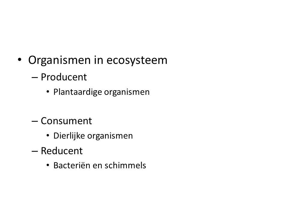 Organismen in ecosysteem