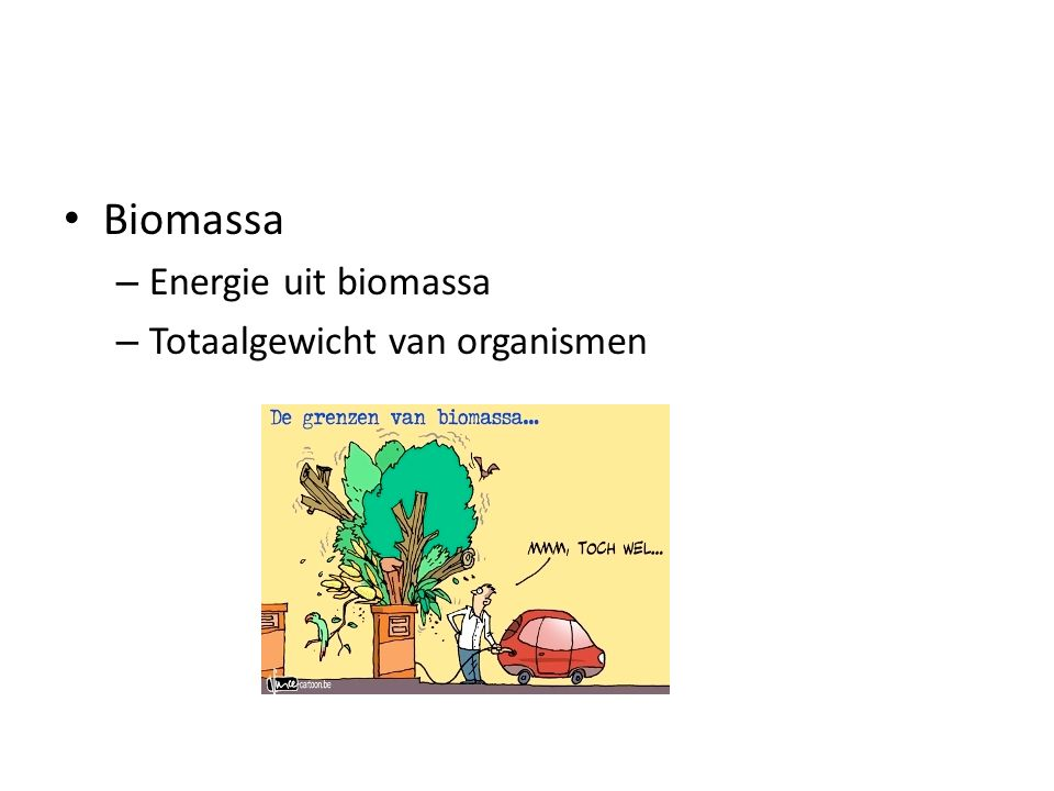 Biomassa Energie uit biomassa Totaalgewicht van organismen
