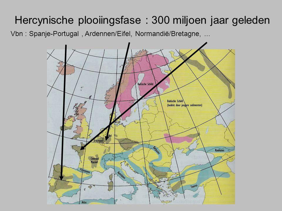 Hercynische plooiingsfase : 300 miljoen jaar geleden