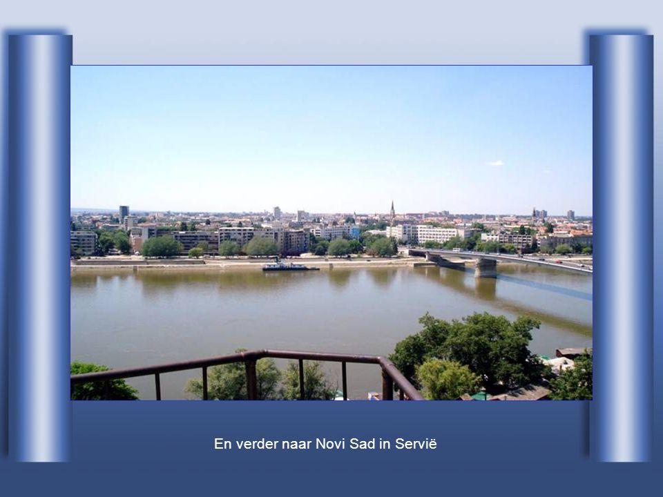 En verder naar Novi Sad in Servië