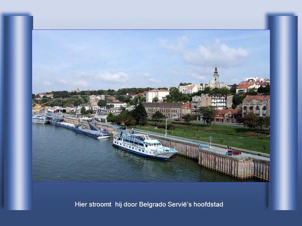 Hier stroomt hij door Belgrado Servië's hoofdstad