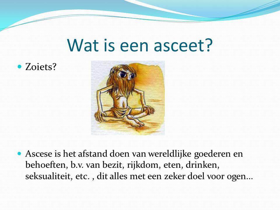 Wat is een asceet Zoiets