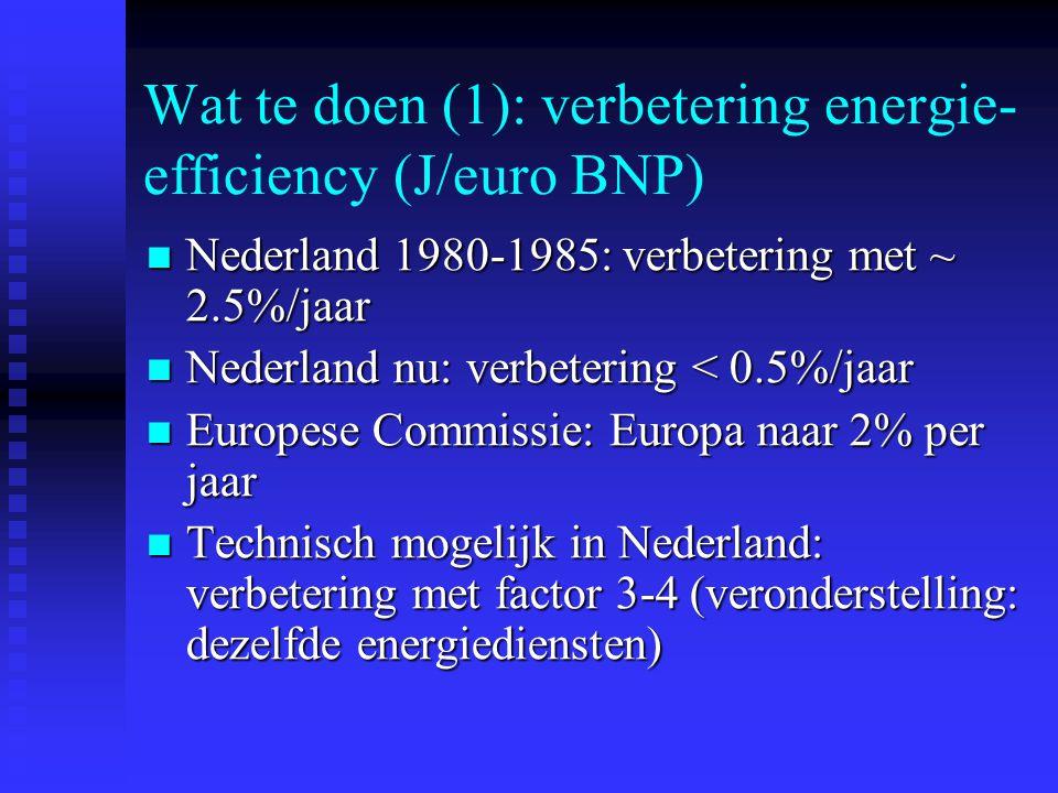 Wat te doen (1): verbetering energie-efficiency (J/euro BNP)