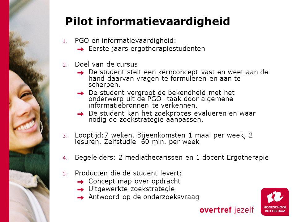 Pilot informatievaardigheid