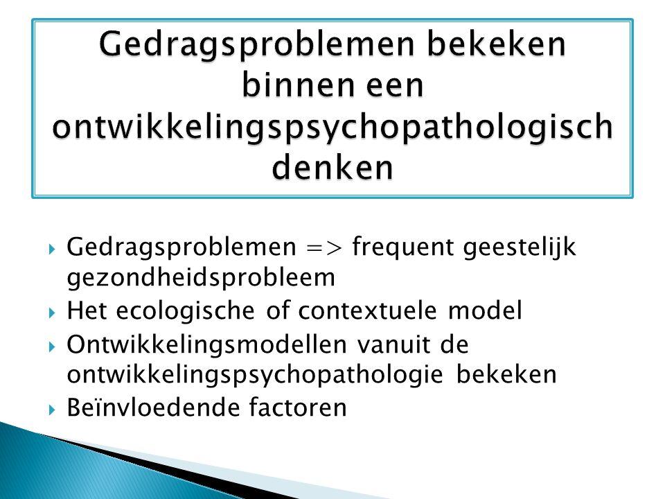Gedragsproblemen bekeken binnen een ontwikkelingspsychopathologisch denken