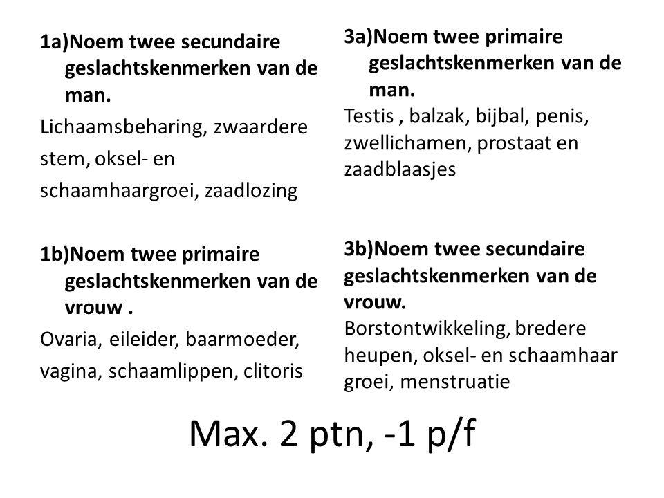 3a)Noem twee primaire geslachtskenmerken van de man.