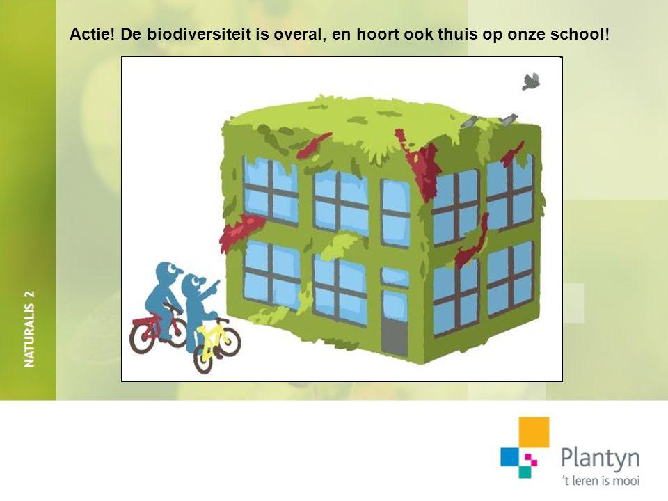 Actie! De biodiversiteit is overal, en hoort ook thuis op onze school!