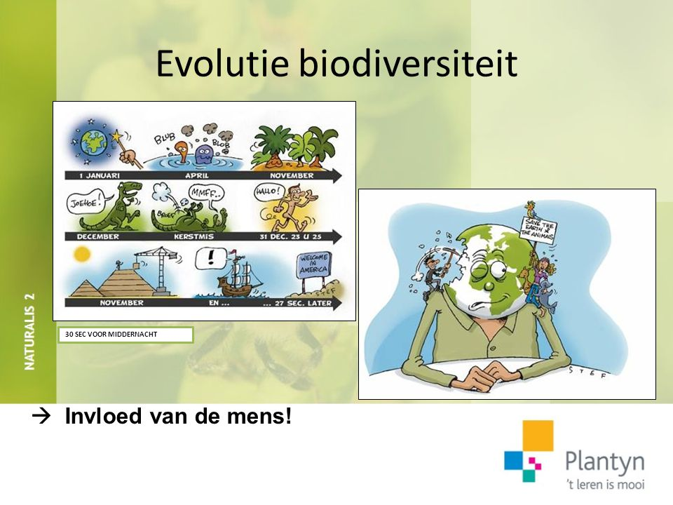 Evolutie biodiversiteit