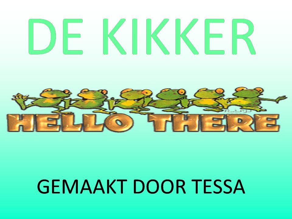 DE KIKKER GEMAAKT DOOR TESSA