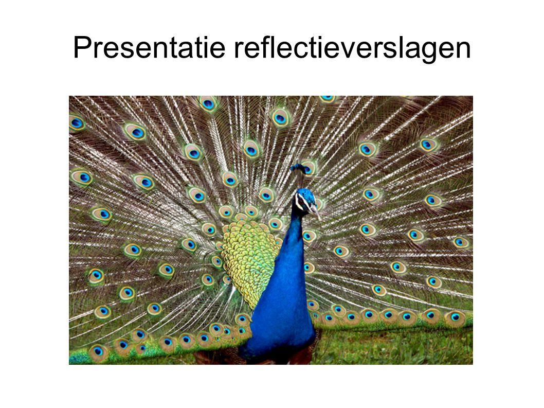 Presentatie reflectieverslagen