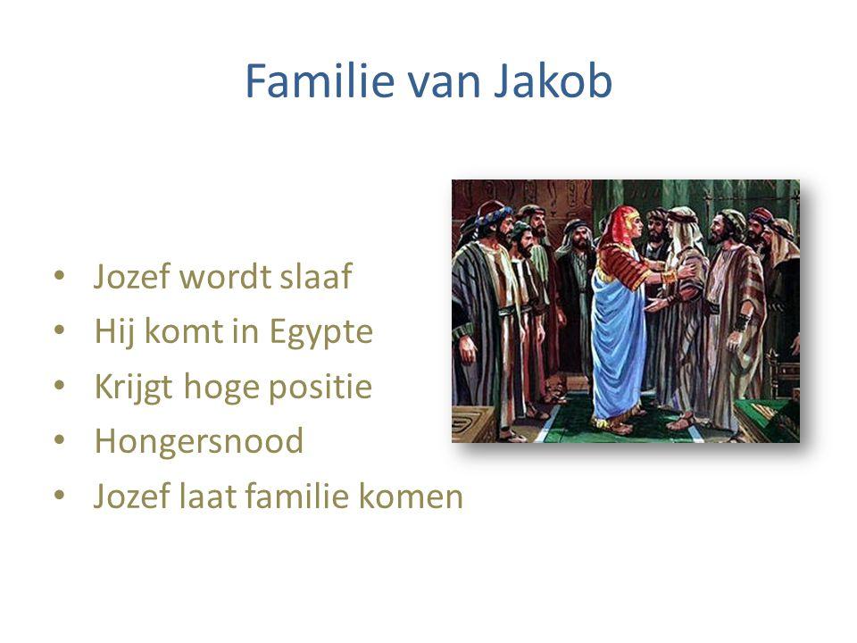 Familie van Jakob Jozef wordt slaaf Hij komt in Egypte