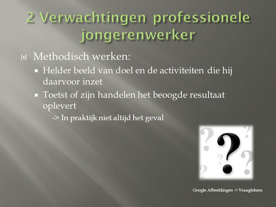 2 Verwachtingen professionele jongerenwerker