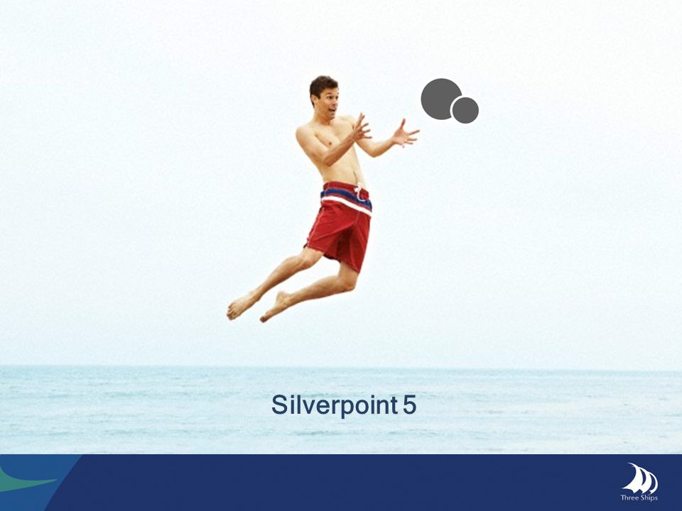 Silverpoint 5