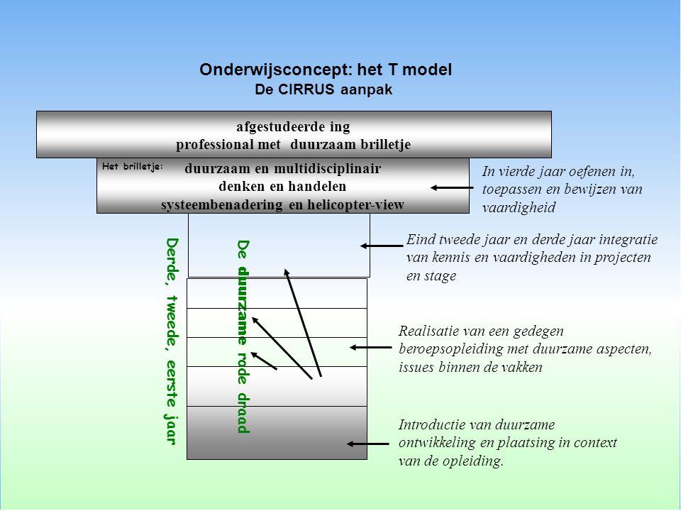 Onderwijsconcept: het T model