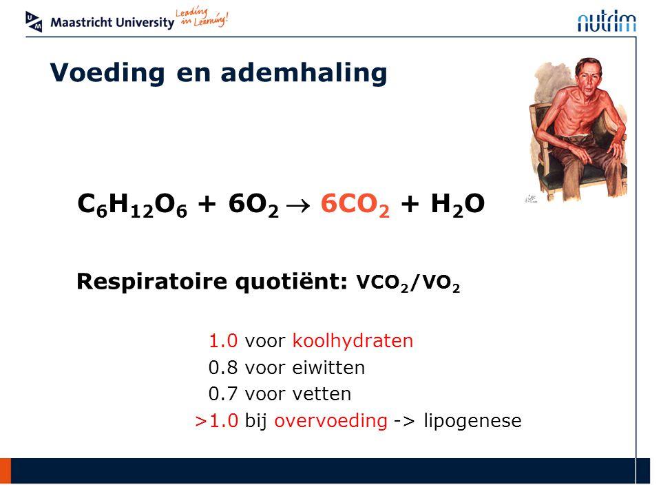 Voeding en ademhaling C6H12O6 + 6O2  6CO2 + H2O