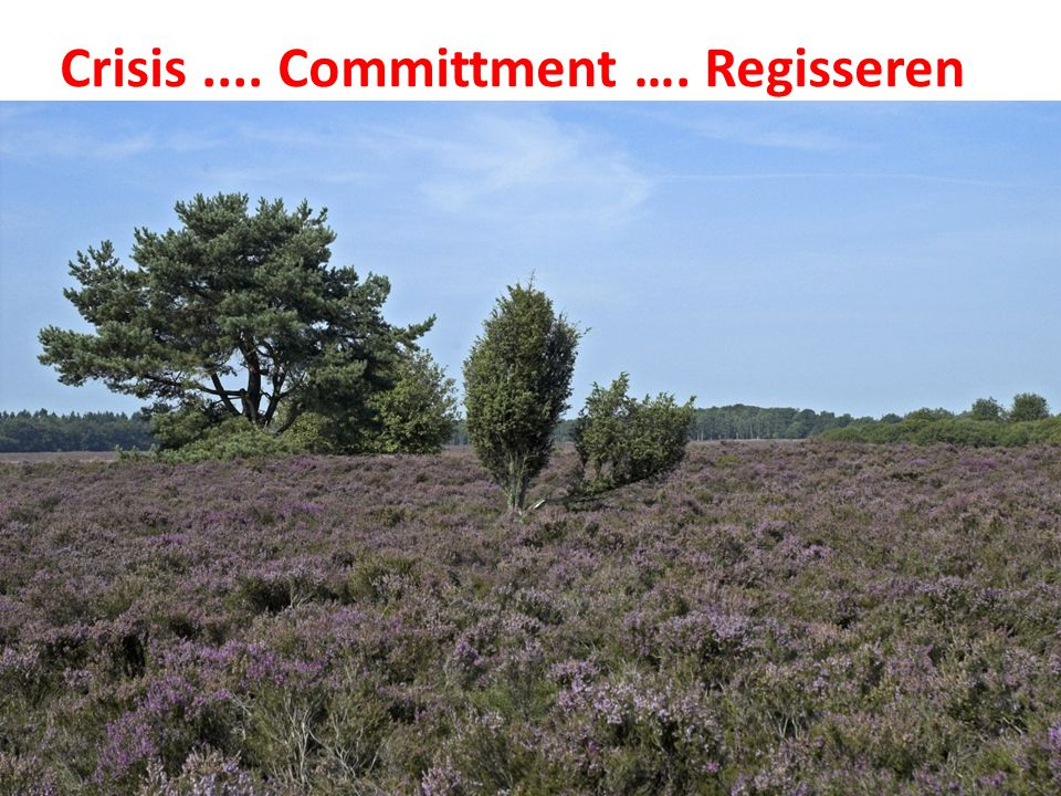 Crisis .... Committment …. Regisseren