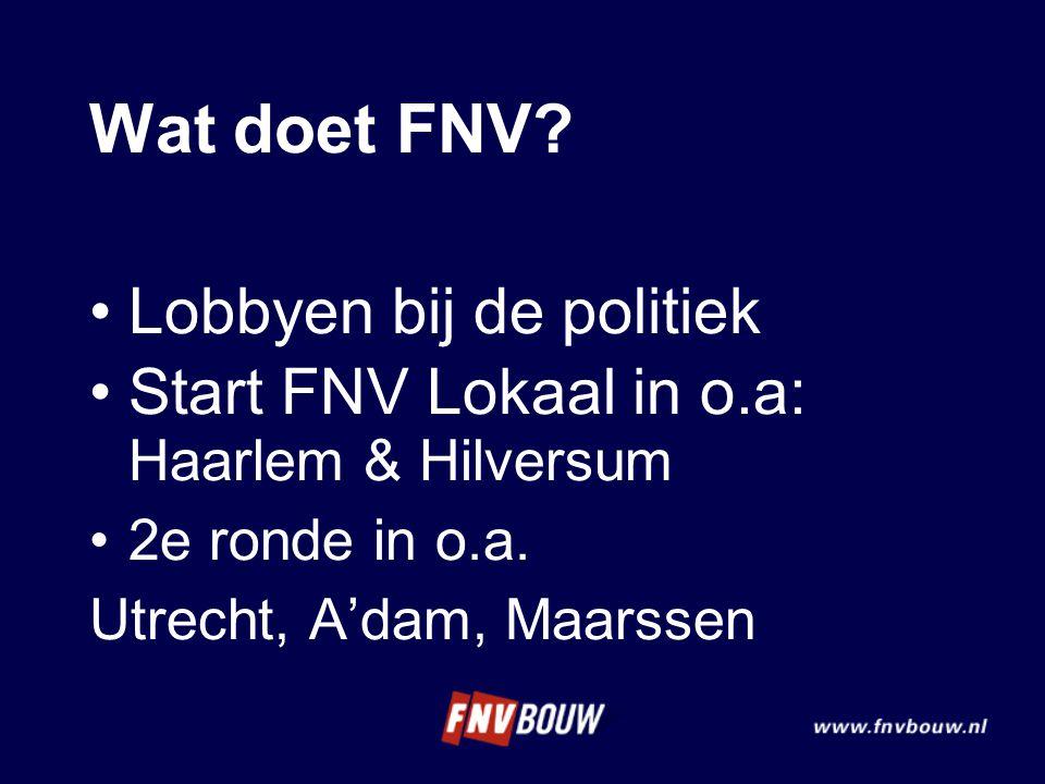 Wat doet FNV Lobbyen bij de politiek
