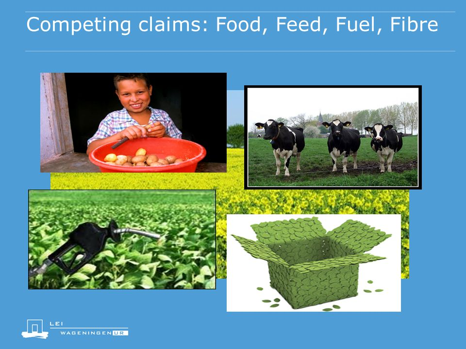 Competing claims: Food, Feed, Fuel, Fibre