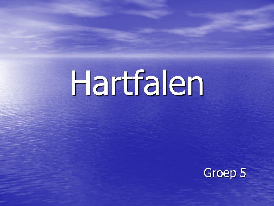 Hartfalen Groep 5