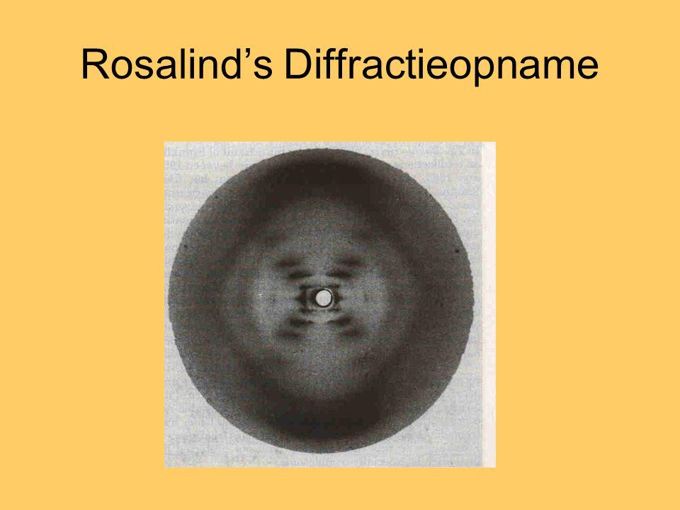 Rosalind's Diffractieopname