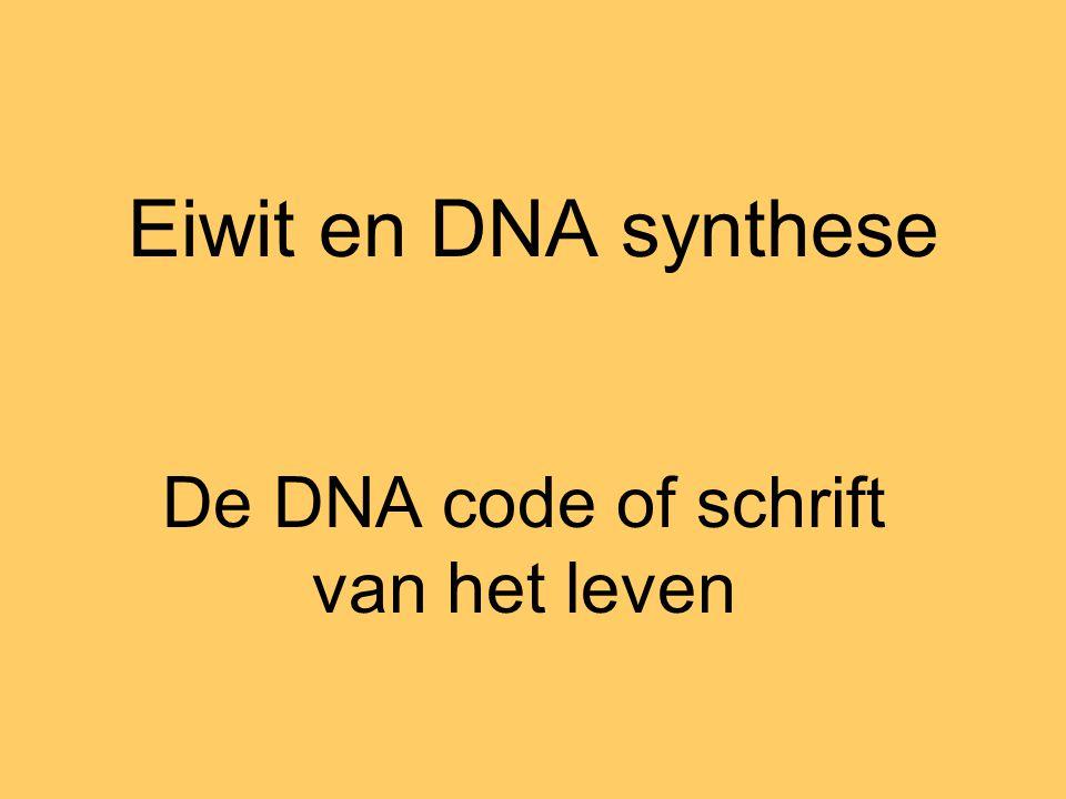 De DNA code of schrift van het leven
