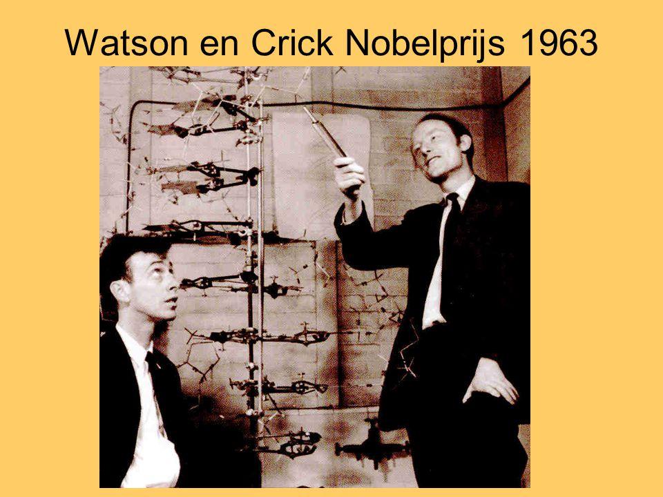 Watson en Crick Nobelprijs 1963