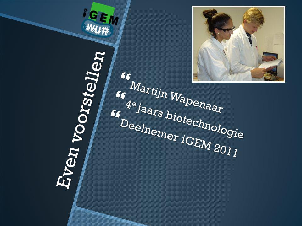Even voorstellen Martijn Wapenaar 4e jaars biotechnologie